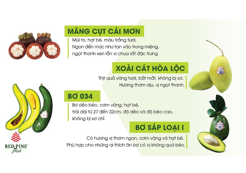 trái cây việt chất lượng